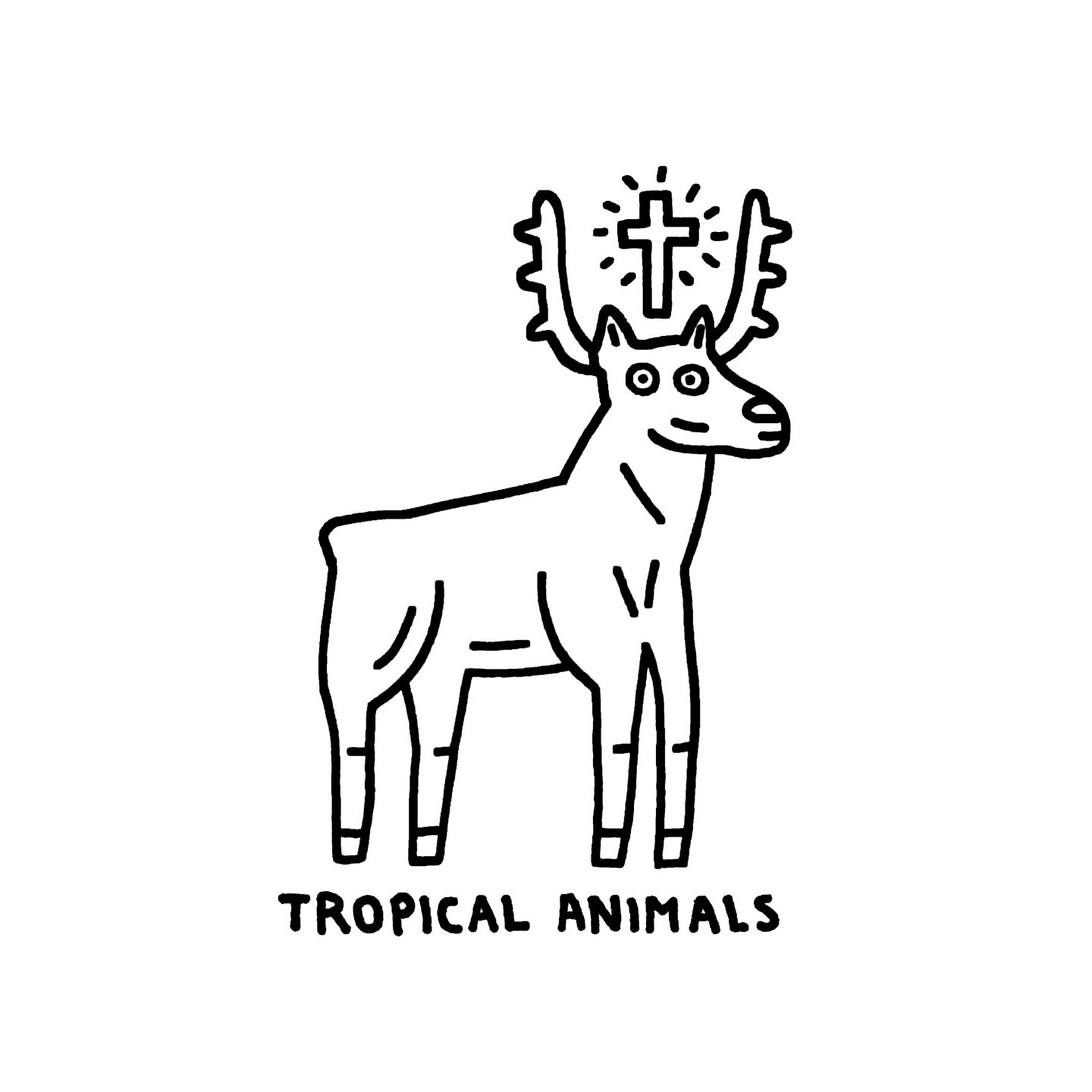 Tropical Animals